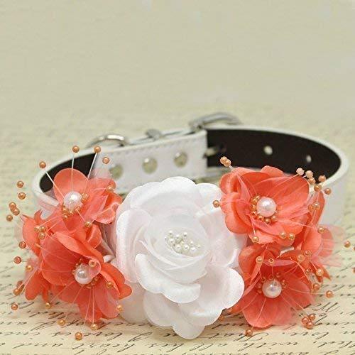 Amazon white and coral floral dog collar pets wedding white and coral floral dog collar pets wedding accessory rose flowers with pearls mightylinksfo
