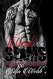 Mend the Seams (Buried Secrets Book 3)
