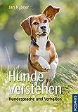 Hunde verstehen: Hundesprache und Verhalten