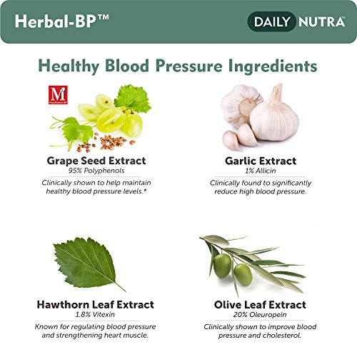 Herbal-BP Natural Blood Pressure Support with Stress Management - Medical Grade Botanical Extracts - Safe, Long-Term Support (3-Pack) by DailyNutra (Image #2)