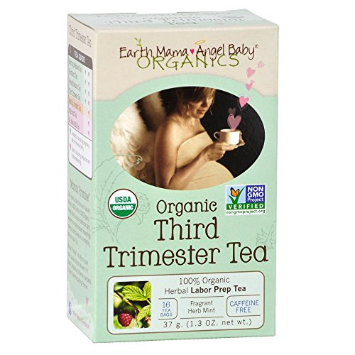 Earth Mama Angel Baby Trimester product image