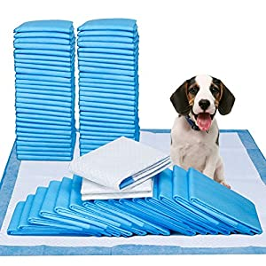 Pee Pads- 100 Count – 23″ x 24″ Dog Pads for Puppy Training Pads by Petphabet