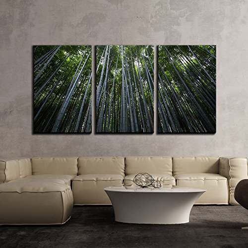 Green Bamboo Forest x3 Panels