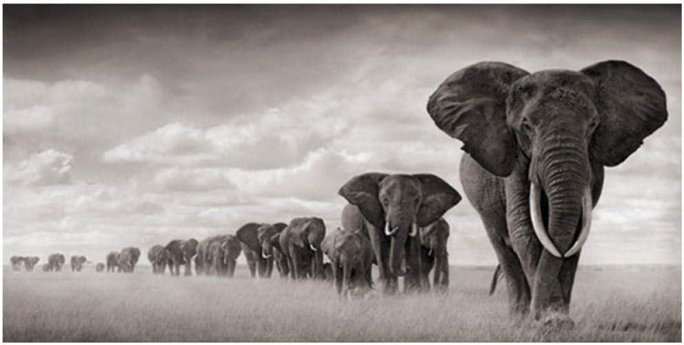 xwwnzdq Elefantes de África Animales Salvajes Lienzo Pintura Carteles e Impresiones Cuadros Cuadros de Arte de Pared para Sala de Estar Decoración del hogar 60x120cm Sin Marco