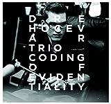 Dre Hocevar Trio: Coding of Evidentiality by Dre Hocevar