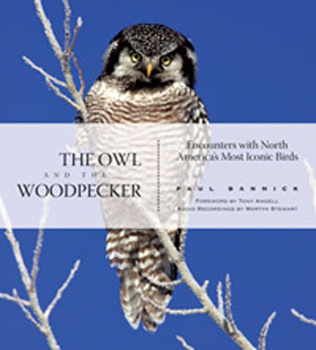 The Owl and the Woodpecker: Encounters With North America's Most Iconic Birds (With Audio CD)