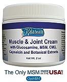 Kala Health - for Humans - MSM Powder - Fine Powder - 1 lb