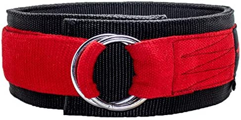CERBERUS STRENGTH Triple-Ply Deadlift Belt