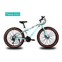 Yoli 7/21/24/27 Speed 20/26 Inch Fat Bike/Snow Bike,4.0 Width Wheel,High Carbon Steel Frame,Aluminum Alloy Rim,Front & Rear Disc Brake