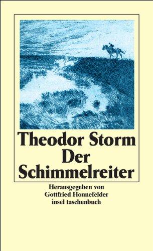 Der Schimmelreiter (Insel Taschenbuch) (German Edition)