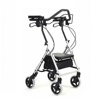 Amazon.com: Raionatti - Cochecito de paseo para ancianos ...