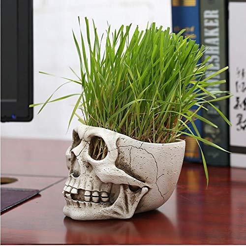 Resin Skull Flowerpot Statues Green Plant Flower Pot Desk Decor Toy Home Halloween Party Decoration