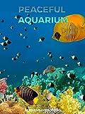 Peaceful Aquarium - Screensaver Video