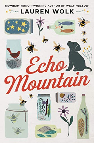 Echo Mountain by [Wolk, Lauren]