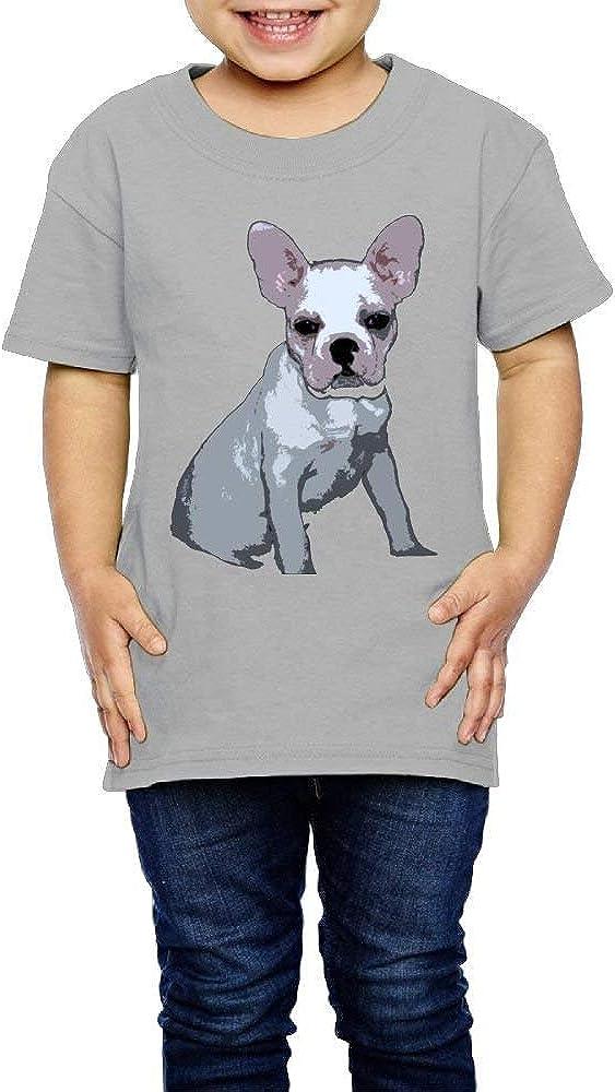Beauregar Cute French Bulldog Boys 2T-6T Summer Crew Tee Soft Short Sleeve