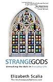 Strange Gods: Unmasking the Idols in Everyday Life by Elizabeth Scalia (2013) Paperback