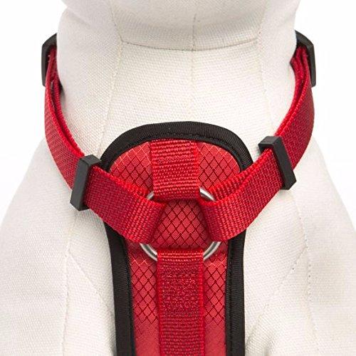 KONG Comfort Padded Harness Red Medium