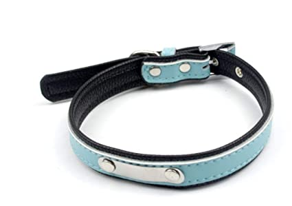 Amazon Com Gxian Home Dog Cat Collar Can Be Lettering