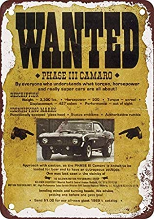 Targa in Latta 20,3 x 30,5 cm Queenstown Nuova Zelanda Vintage Look Riproduzione Metallo 8X12 inch R1171