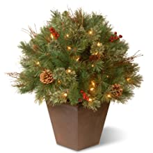 National Tree 24 Inch Glistening Pine Porch Bush with Red Berries, Cones and 50 Clear Lights in Decorative Pot (GN19-24TLO)