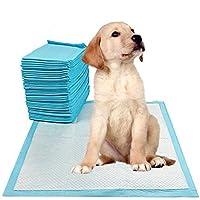 200pcs/ 400pcs Puppy Pet Dog Indoor Cat Toilet Training Pads Super Absorbent 60x60cm
