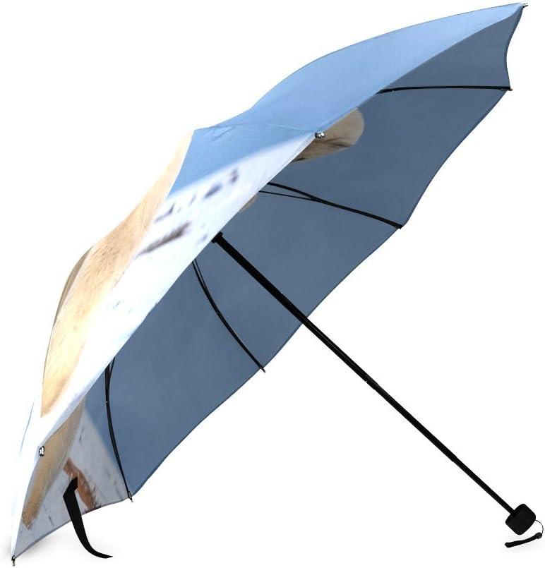 Airplane Aircraft Pattern Folding Rain Umbrella Parasol Windproof Travel Sun Umbrella Compact