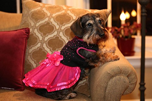 Pictures of Topsung Small Dog Clothes Dress Blingbling Tutu 3