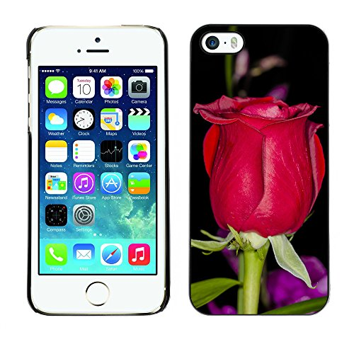 Premio Sottile Slim Cassa Custodia Case Cover Shell // F00009473 se leva // Apple iPhone 5 5S 5G