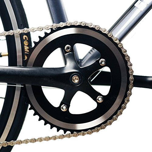 Solomone Cavalli Lightweight Classic Sports 8 Speed 700C Medium Road Bicycle Bike w/Shimano Derailleur by Solomone Cavalli (Image #5)