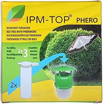 IPM-TOP Feromona de polillas de árbol de caja (Cydalima perspectalis) - 2x Recarga activo durante 2 x 3 meses Suficiente para una temporada completa - Trampa no incluada