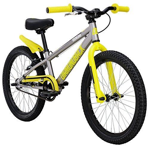 Diamondback Bicycles Jr Venom Bike 20 Wheels Gloss Silver [並行輸入品] B07514FXLQ