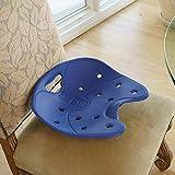 BackJoy SitSmart Posture Core Seat
