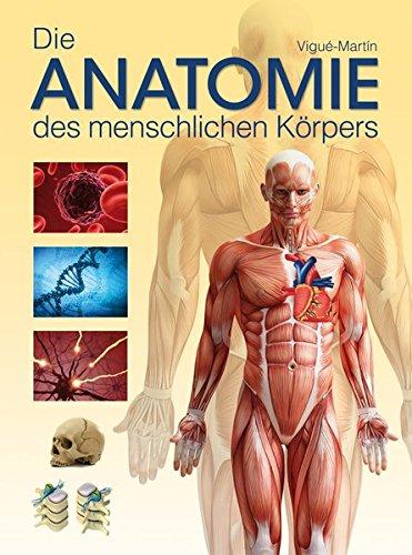 Die Anatomie des menschlichen Körpers: Amazon.de: Jordi Vigué-Martin ...