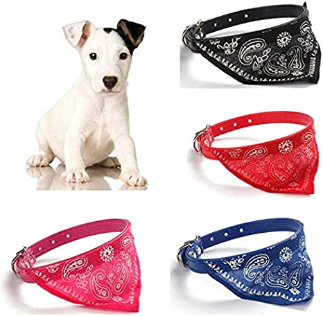 Unbekannt Collar para Perros con pañuelo para Perros pequeños ...