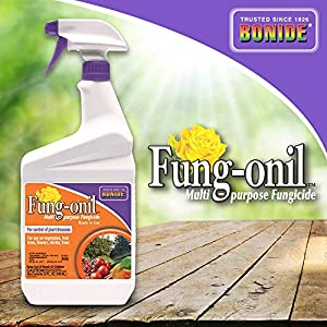 Bonide (BND883) - Fungal Disease Control, Fung-onil Multi-Purpose Ready to Use Fungicide (32 oz.)