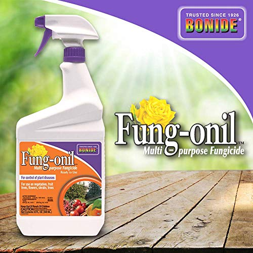 Bonide (BND883) - Fungal Disease Control, Fung-onil Multi-Purpose Ready to Use Fungicide (32 oz.) (House Plant Antifungal)