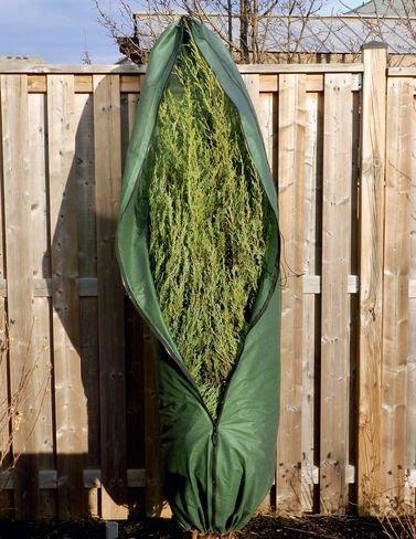 Gardener's Supply Company Tree Zip Cedar Jacket, Large