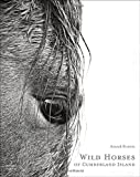 img - for Wild Horses of Cumberland Island book / textbook / text book