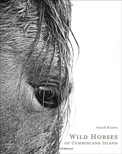 Wild Horses of Cumberland - Oliver Dc Peoples