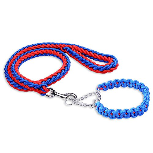 Blue Dog Flexible Leash - 7