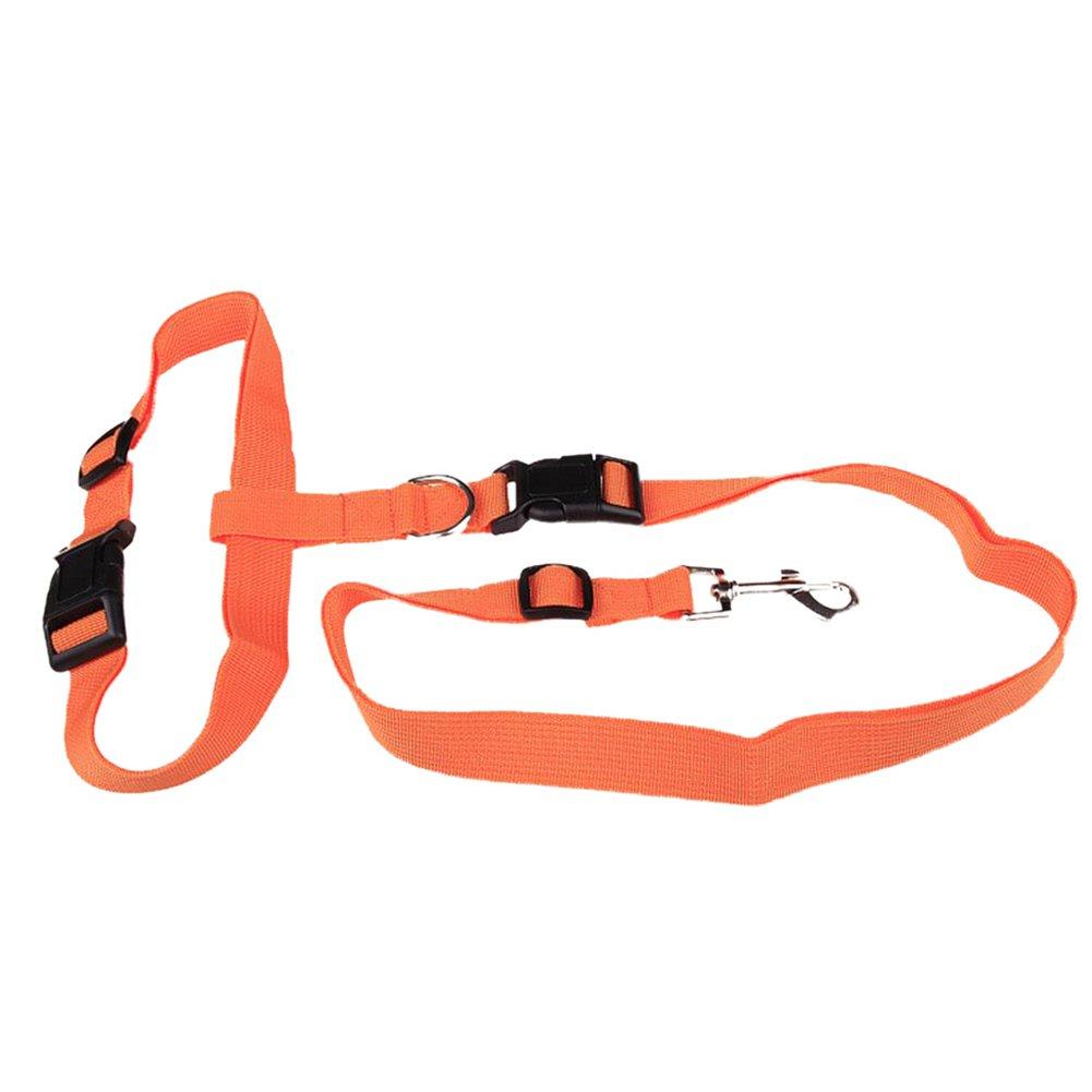 Emorias 1 Pcs Correa de la Mascota Caminando Cinturón de Manos Libres Entrenamiento Lead Leash - Azul