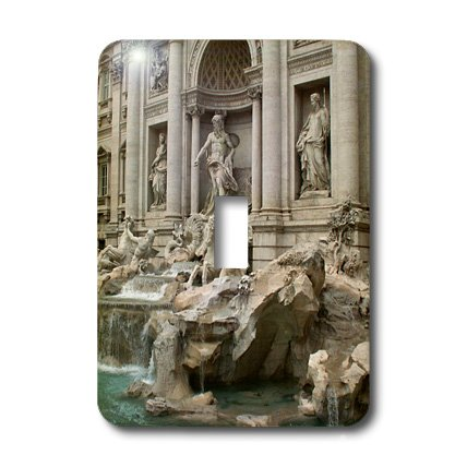3dRose LLC lsp_47792_1 Trevi Fountain in Rome Italy Places To Travel Single Toggle Switch by 3dRose