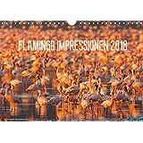 Flamingo Impressionen 2018 (Wandkalender 2018 DIN A4 quer): Grazile Vögle in rosarot (Monatskalender, 14 Seiten ) (CALVENDO Tiere) [Kalender] [Apr 01, 2017] Gerlach, Ingo
