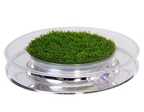 Petstages-739-Nature-Track-Cat-Play-Toy-Track-with-Ball-and-Faux-Grass