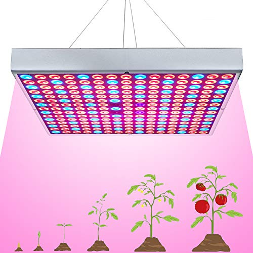 45W LED Grow Light for Indoor Plants Growing Lamp 225 LEDs UV IR Red Blue Full Spectrum Plant Lights Bulb Panel for Hydroponics Greenhouse Seedling Veg and Flower by Venoya (Best Fluorescent Bulbs For Growing Weed)