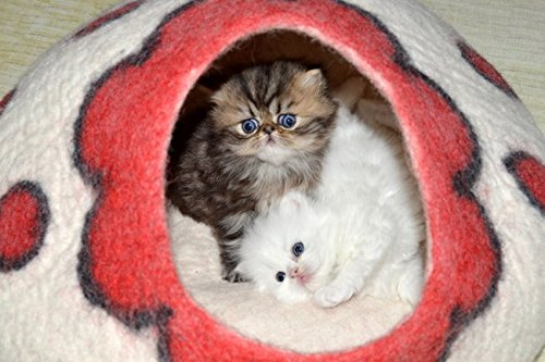 Best Cat Cave Bed, Unique Handmade Natural Felted Merino Wool, Large Covered and Cozy, Also Perfect for Kittens, Includes Bonus Catnip, Original Cat Caves, By Earthtone Solutions (Cushy Casa) by Earthtone Solutions (Image #3)