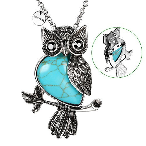 JADENOVA Antique Owl Brooch Pin Pendant Necklace Energy Healing Crystal Gemstone Rhinestone 20 Inches Stainless Steel Chain(Synthetic Turquoise)