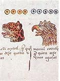 Códice Magliabechi - Libro de la Vida, Anders, Ferdinand and Jansen, Maarten, 9681649281