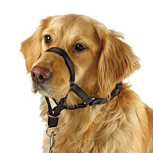 Barkless Dog Head Collar, No Pull Training Tool for Dogs on Walks, Includes Free Training Guide, 5 (L) by Barkless