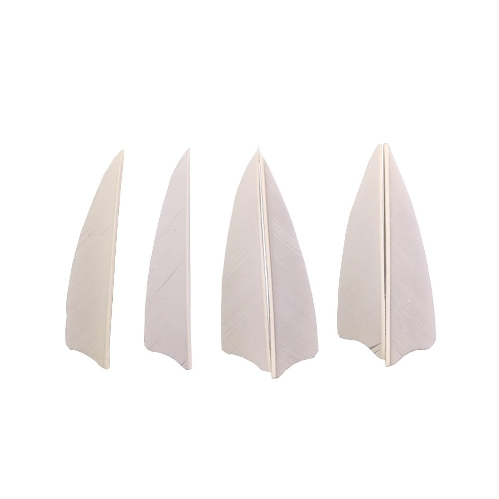 50pcs Arrow Turkey Feathers 3 inch Natural Feather Fletching Right Wing Peltate